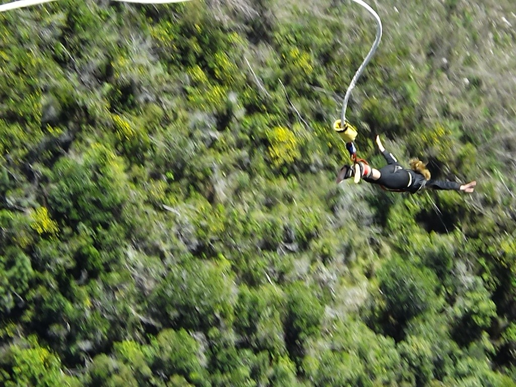 Bungee jumping (10)