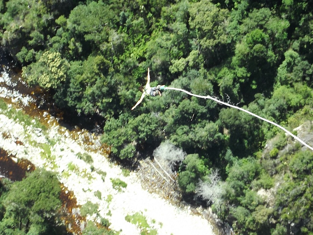 Bungee jumping (14)