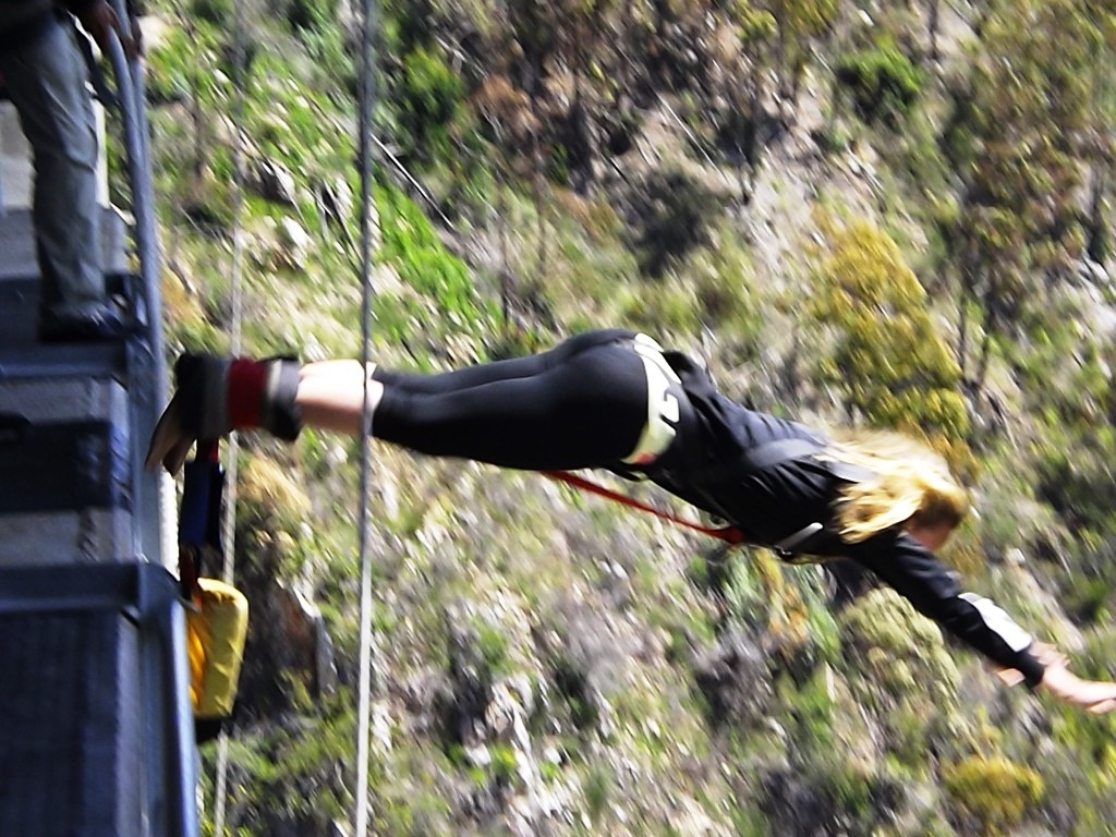 Bungee jumping (7)